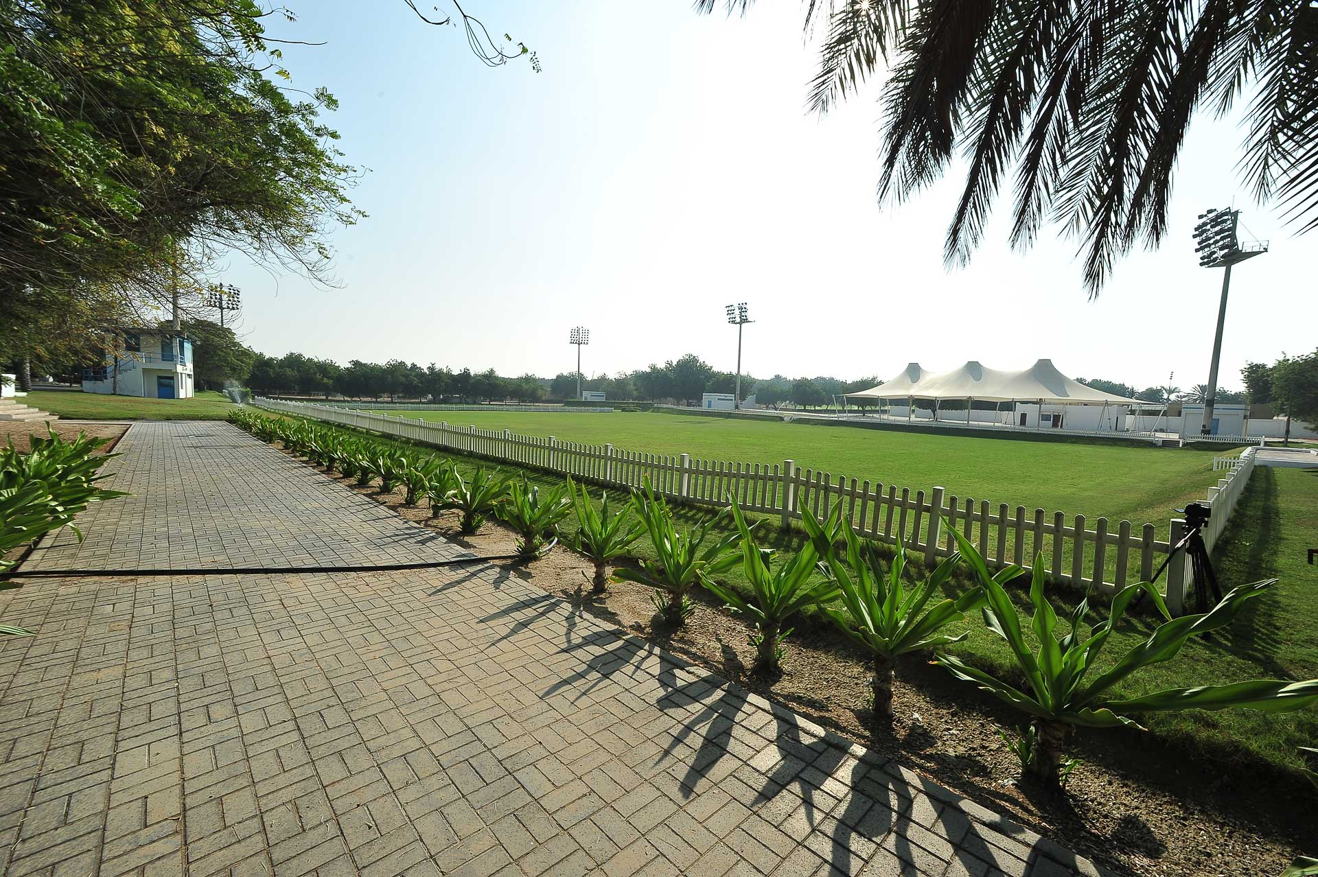 Sharjah Arabian Horse Festival - Sharjah Equestrian & Racing Club